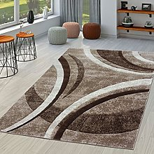 Living room rug with modern contour cut pattern in