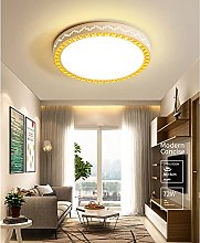 LIWENGZ Led Ceiling Lamp Modern Round Three-color