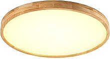 LIWENGZ Modern Ceiling Light Simple Round Ceiling