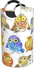 LKTBJEMFY Colorful Funny Owl Laundry Basket, Large