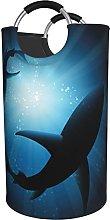 LKTBJEMFY Ocean Animal Sharks Laundry Basket,