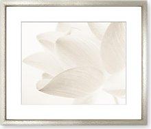 Lotus Flower Framed Print & Mount, 58 x 73cm, White