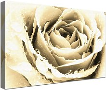 Love Photographic Print on Canvas in Beige East