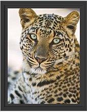 Lovely Leopard Framed Art Print East Urban Home