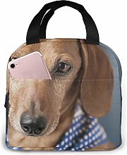 Lsjuee The Pet Miniature Dachshund Insulated Lunch