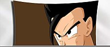 LSSWY Tapestries,Animation Dragon Ball Series