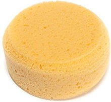 LTWHOME 3-1/2 Inch Synthetic Silk Sponges 1-1/2