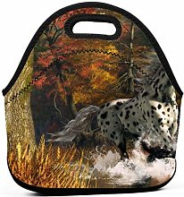 Lunch Bag Cool Bag,Appaloosa Horse Lunch Tote Box