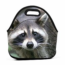 Lunch Bag Cool Bag,Raccoon Lunch Tote Box Cool Bag