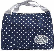 Lunch Bag Insulated Cold Canvas Striped Picnic