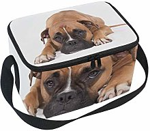 Lunch Bag Lovely Boxer Dog Cooler for Picnic