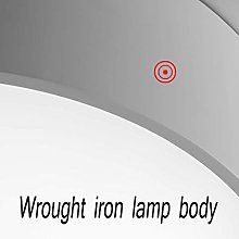 LXDZXY Ceiling Lights,Round Room Ceiling Lamp