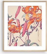 Mabel Royds - 'Tiger Lillies' Framed Print