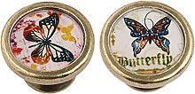 MagiDeal Set 2 Vintage Butterfly Cabinet Door