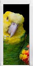 Magnificent Yellow-Headed Amazon Door Sticker East