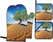 Marutuki Tree In The Desert On Sand Dune Dry But