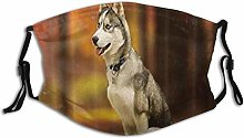 Mask For Face Animal Dog Forest Grass Husky