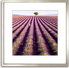 Matteo Colombo - 'Lavender Stripes' Wood