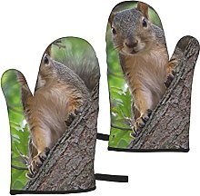 Mayblosom Squirrel in The Tree Oven Mitts,Glove