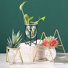 Mcottage Table Desk Bulb ABS Hydroponic Vases