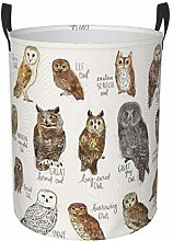 Meiya-Design Collapsible Round Storage Bin,Owls