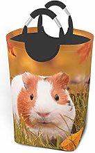 Meiya-Design Laundry Hamper Storage Bin Guinea Pig