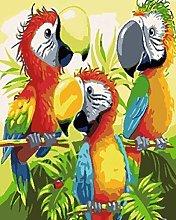 MEKVF Paint By Number Jungle Animal Toucan Parrot
