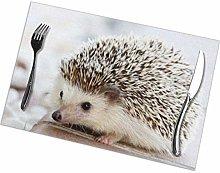 Mesllings Hedgehog Placemat Design,Heat Resistant
