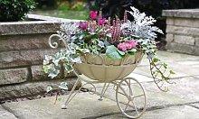 Metal Wheelbarrow Planter: One Planter