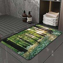 Microfiber Bath Rug Absorbent Bathroom Mats Sunny