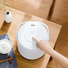 Mini Electric Rice Cooker, Thermal lunch box,