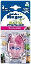Mister Magic Eraser–Fridge, with Vinegar
