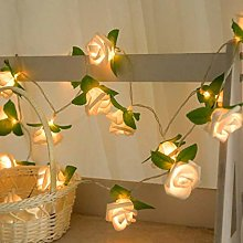 Mitlfuny Rose LED Window Curtain Lights String