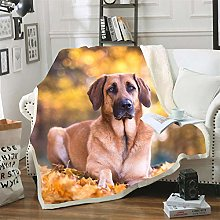Mmjjshdp Blankets Dog Animal Blanket Yoga Blanket
