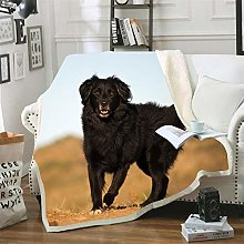 Mmjjshdp Blankets Dog Animal Printed Blanket Soft