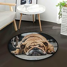 Mnsruu English Bulldog Sleeping Round Area Rug for
