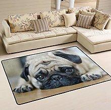 Mnsruu Sad Puppy Pug Dog Area Rug for Living Room