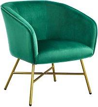 Modern Accent Chair Soft Velvet Tub Chair Side