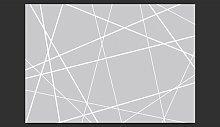 Modern Cobweb 280cm x 400cm Wallpaper Mikado Living
