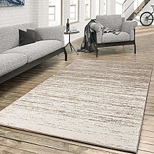 Modern Colour Graduated Rug for the Living Room in