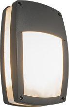 Modern Outdoor Wall Lamp Dark Grey - Glow Recta 1