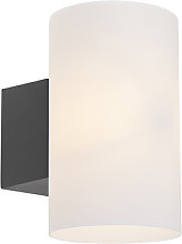 Modern Outdoor Wall Lamp Dark Grey with Frosted