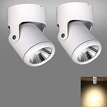 Modern Single Ceiling/Wall Spotlight Eye-Care