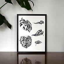 "Monstera Botanical Illustration 12"" x 16"""