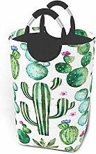 N\A Cactus Plants Spikes Cartoon Green Storage