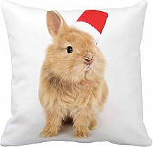 N\A Throw Pillow Cover Brown Alife Baby Rabbit