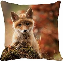N\A Throw Pillow Cover Red Fox Portrait Foxes