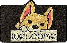N/AB Doormat Non-Slip Soft House Door Mat Entrance
