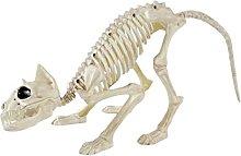 N / B Cat Skeleton, Halloween Skeleton Cat,
