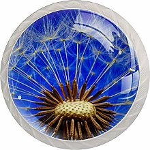 Nature Dandelion PlantRound Glass knob White